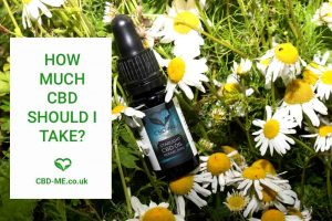 starlight cbd oil by cbd me brand surrounded by daisies 'how much cbd should i take'cbdfaqs